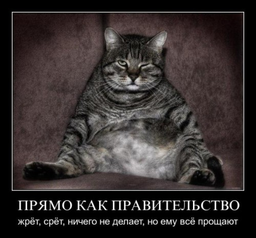 Про конкурсы вконтакте
