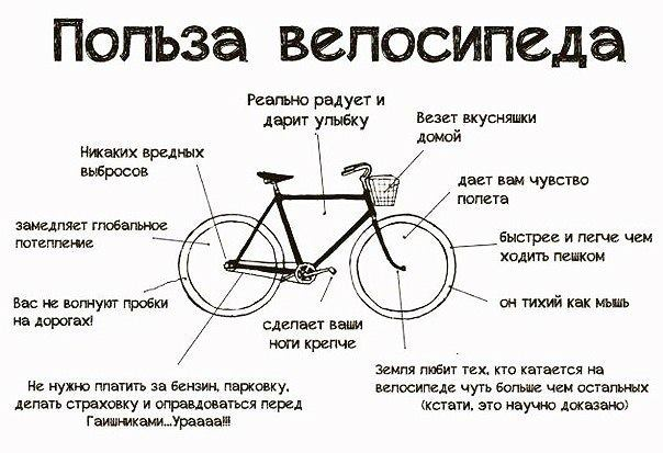 Какая польза от велосипеда