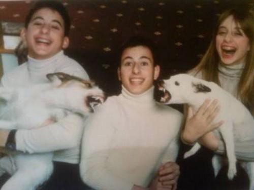 Самые смешные фото с домашними