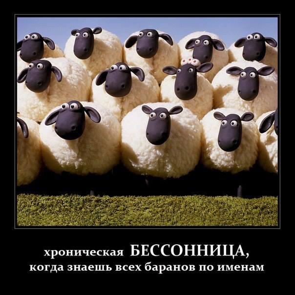 """Бандиты """"ЛНР"""" - жителям Стаханова: """"Отвыкайте от халявы! Не торгуйте гуманитаркой - инвалидам не хватает!"""" - Цензор.НЕТ 1991"""