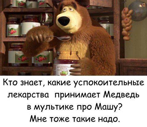 Какие успокоительные принимает Медведь?