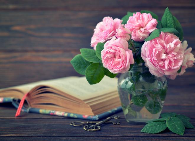 День знань: привітання у віршах