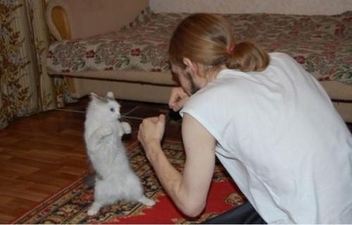 Врукопашную против кота
