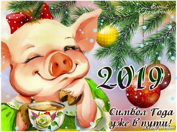 Милые открытки к Новому году свиньи