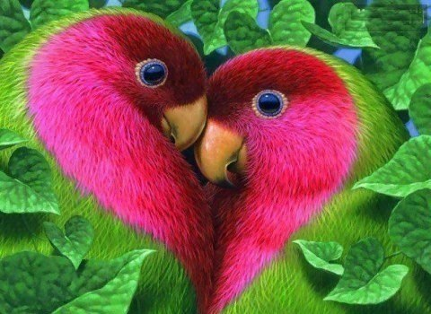 Очаровательные попугайчики