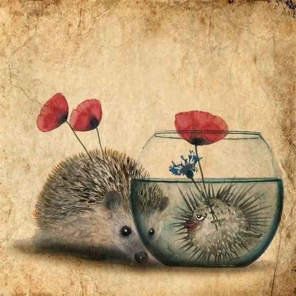 Милые ежики от Anne Boux