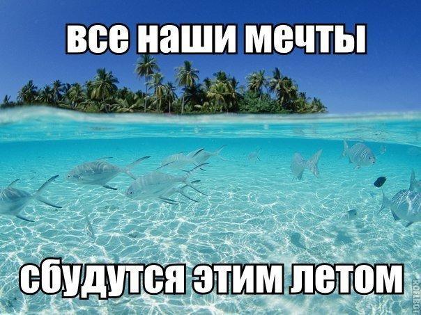 Мем про лето и мечты
