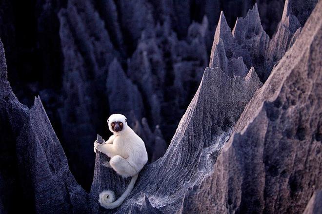 10 потрясающих чудес природы