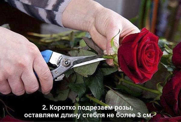 Романтический подарок: сердце из роз и клубники.