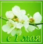 Нежная открытка на 1 мая
