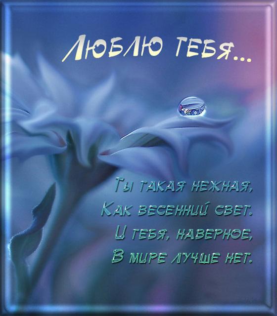 Люблю тебя...