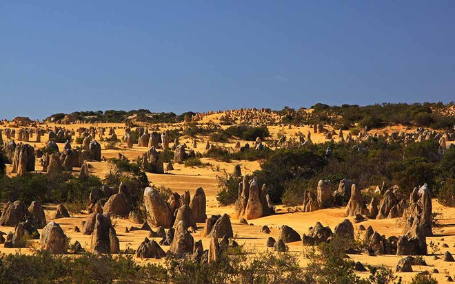 Золотые пески Австралии: пустыня Пиннаклс