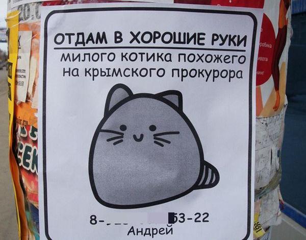 """12 лучших объявлений """"Отдам даром"""""""