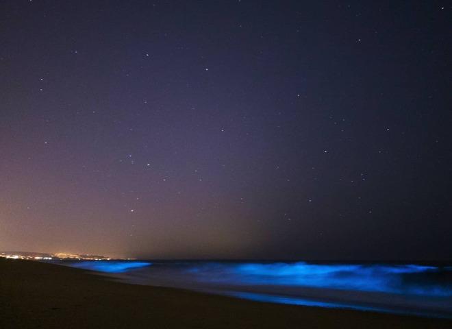 світіння океану
