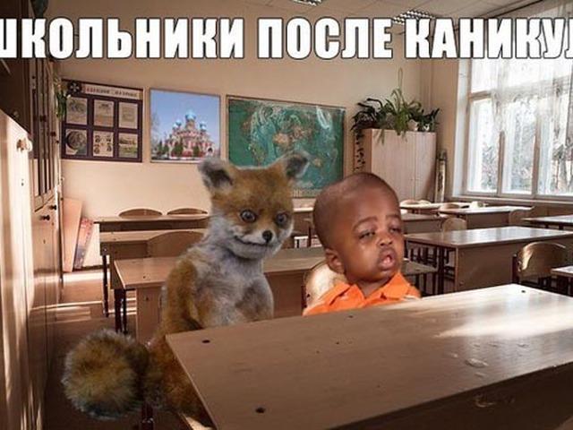 Смешные картинки про школу и каникулы