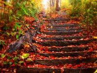 Осення лестница
