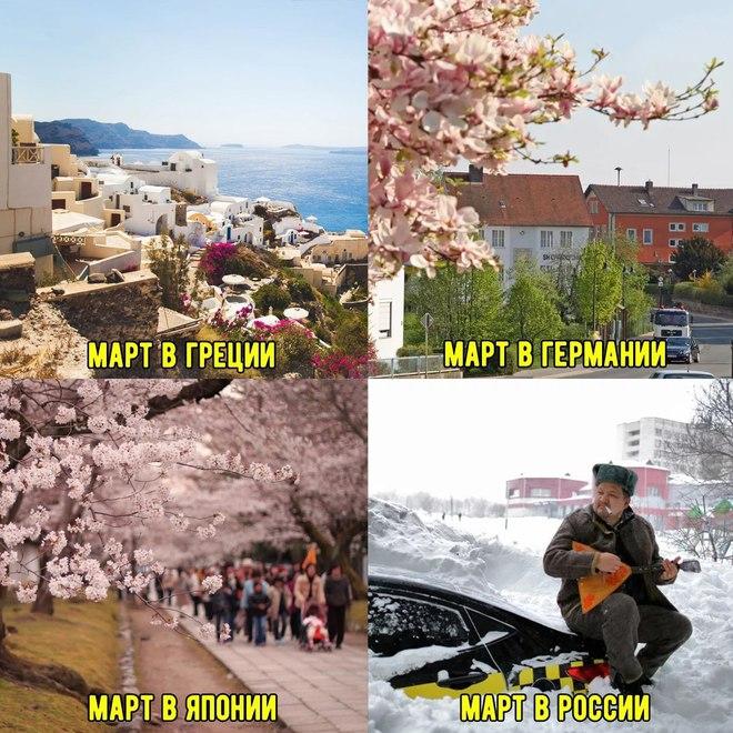 Весна в разгаре