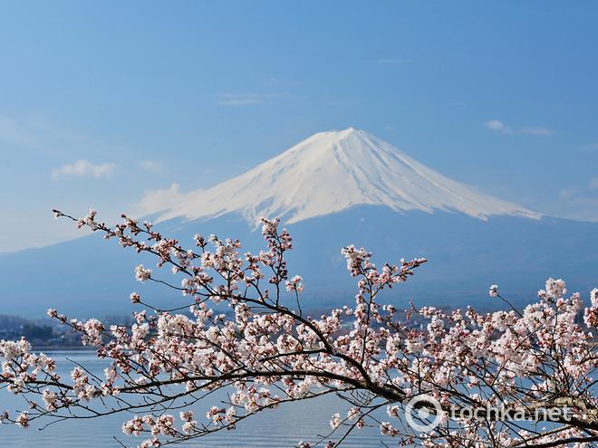 10 стран, которые обязательно стоит посетить. Япония