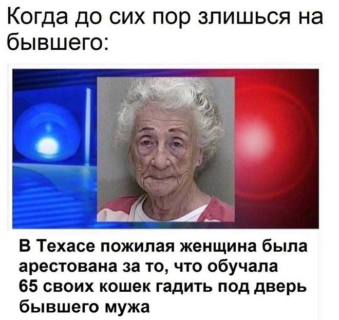Мстительная бывшая жена