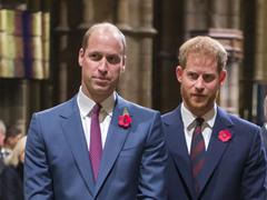 Принц Гаррі і принц Уільям