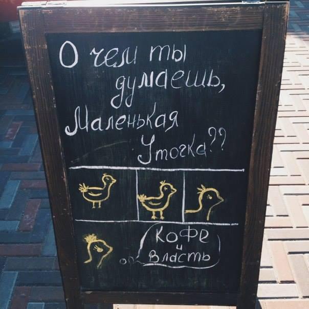 Забавные надписи на табличках