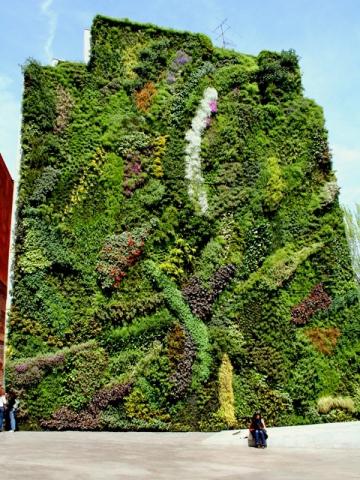 Дивовижні висячі сади. Семіраміда позаздрила б: сад в Caixa Forum, Іспанія