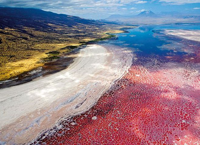 Страшно красиво: Озеро Натрон в Танзанії