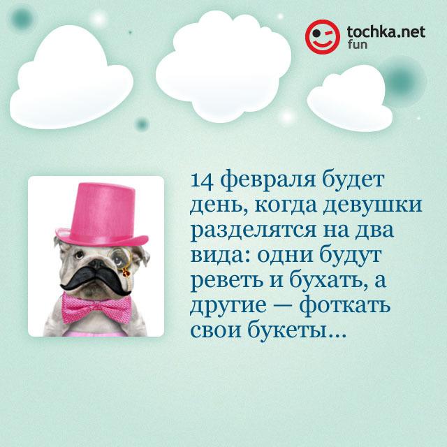 Собака-философяка про 14 февраля