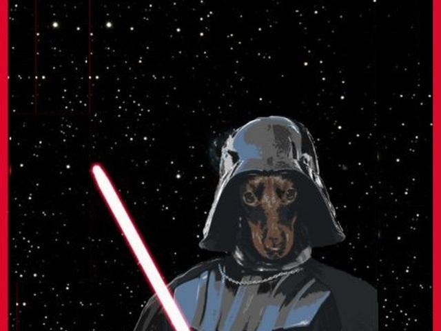 Звездные войны картинки приколы, картинки