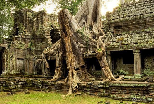 Ангкор за один день: храм Преа Кхан