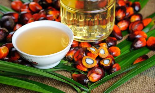 Пальмовое масло по уходу за собой