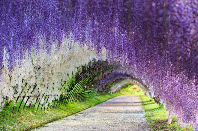 Необыкновенные природные тоннели мира