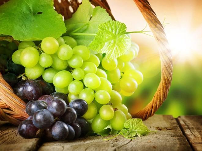 аллергия на виноград фото