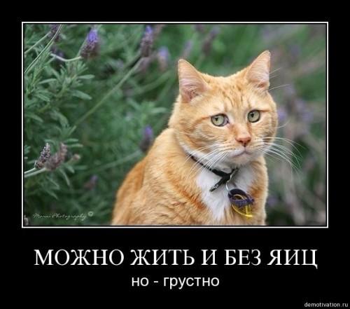 Грусть, тоска меня съедает:)