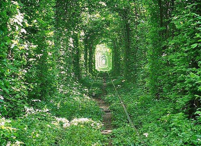 Тоннель любви Клевань