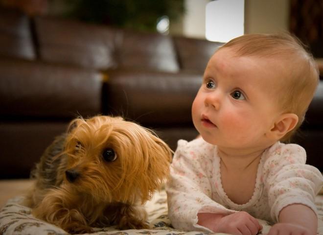 Здоровый малыш - счастье родителей