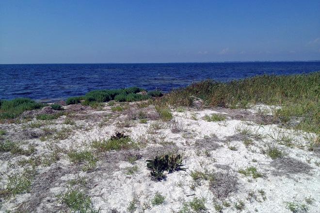 Белоснежные пляжи, творения Эйфеля и античные легенды в Украине