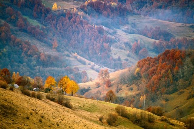 ТОП-5 причин для того, аби восени поїхати в Карпати