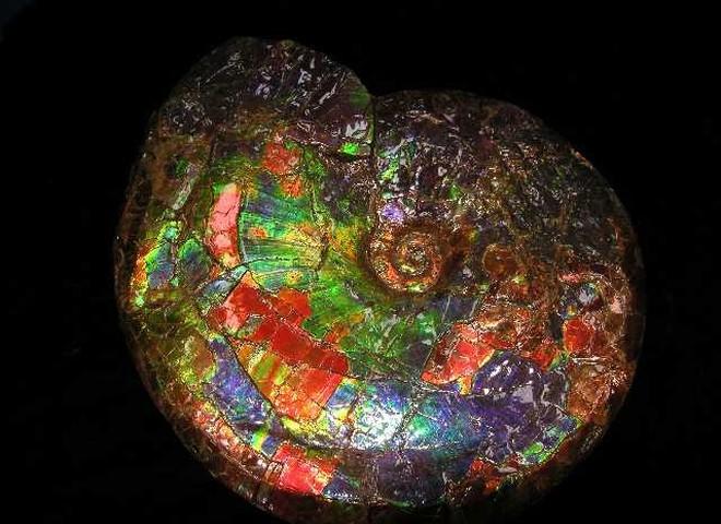 Необычные драгоценные камни выставлены на аукцион