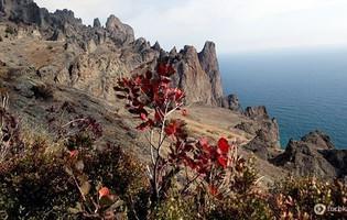 Кара-Даг (вулканічний масив)