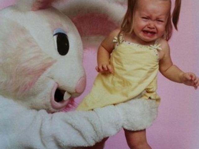Картинки кроликов смешные