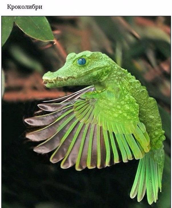 Мифические животные