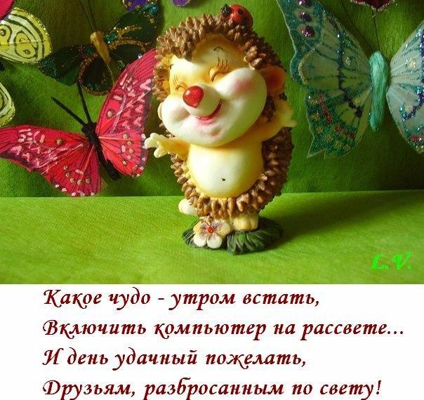Удачного дня всем моим друзьям