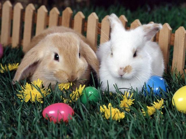 В светлый праздник Пасхи