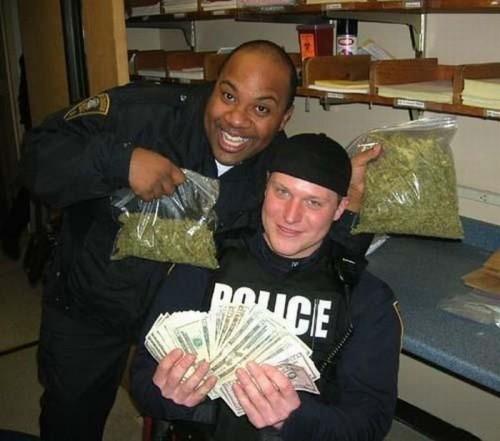Полицейские хроники