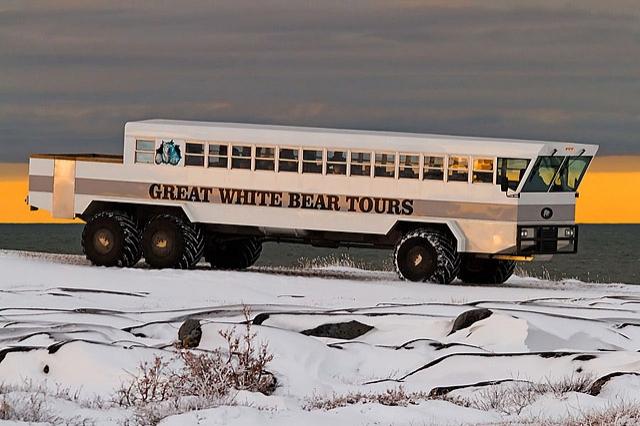 8 найбільш незвичайних видів транспорту: Полярний всюдихід, Канада