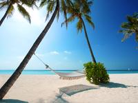 Гамак на пляже