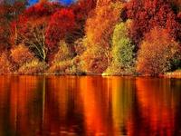 Осень на озере