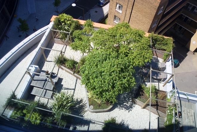 сады на крышах Лондона