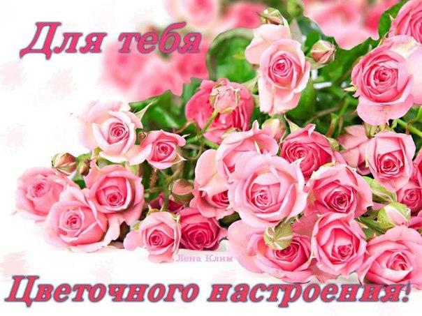 Нежные розы на праздник